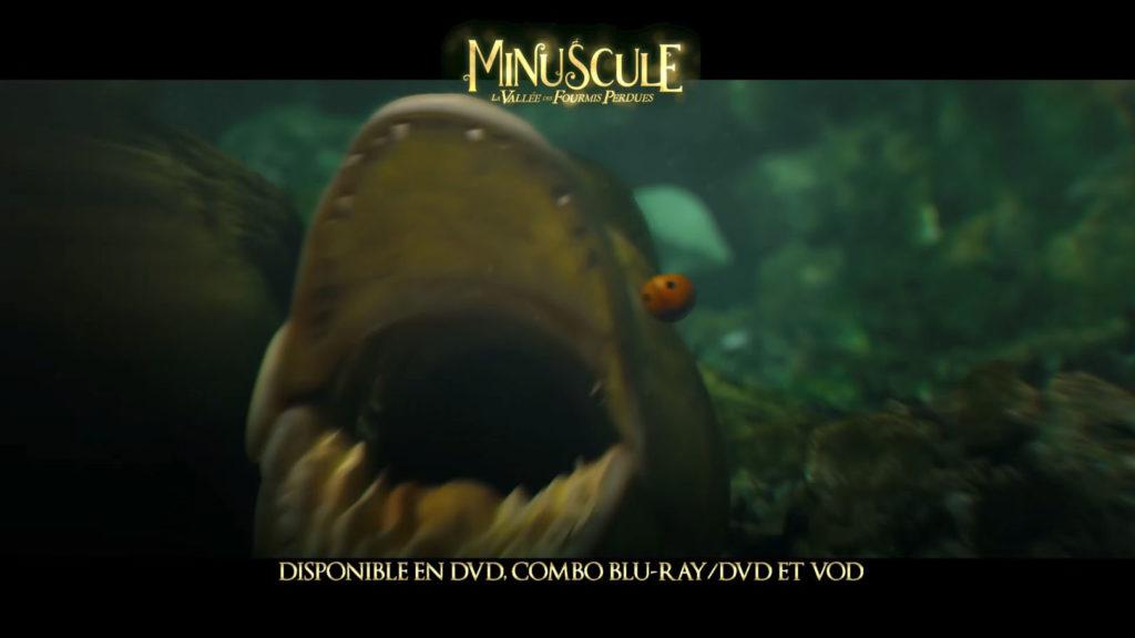 Minuscule5